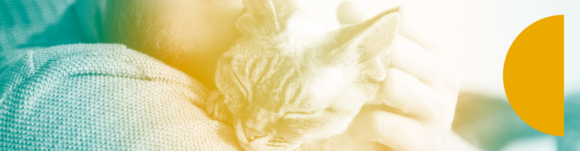 Gnubiotics at the 4th Annual Petcare Innovation Summit May 18th -19th 2021